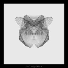 coleoptera .insecta collection #generativeart made with #processing.