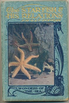 The Starfish and His Relations ~ Wonders of the Sea by Francis Martin Duncan & Lucy T Duncan, 1912
