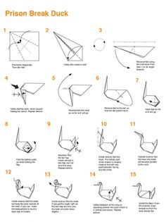 Pour faire l'origami de Prison Break ! :)