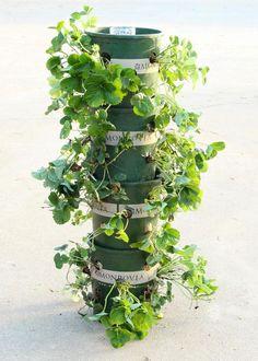 Gör det själv: Jordgubbstorn med inbyggt vattningssystem - Hus & Hem