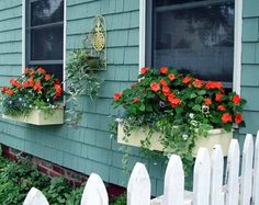 Good Flowers For Flower Boxes | Courtesey Luvzdollz on Flickr.