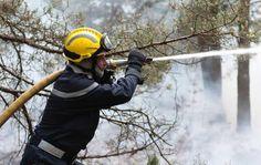 Forêt de Fontainebleau, mercredi. Un incendie a ravagé 6 ha de végétation, près des Gorges de Franchard.
