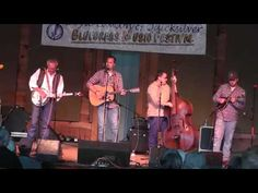 Bird enjoys Bluegrass - wants to be up close and personal with the music!