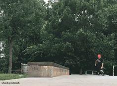 The Art of Skateboarding — Scott Stevens
