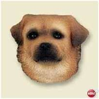 Tibetan Spaniel Head - Magnet Listing in the Other,Dogs,Pets,Home & Garden Category on eBid United States | 144561279