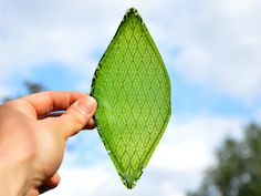 Man-made 'breathing' leaf is an oxygen factory for space travel An artificial leaf converts water and light to oxygen, and that's good news ...