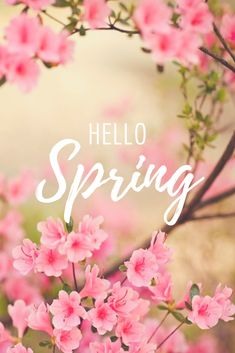 Flower Phone Wallpaper, Iphone Wallpaper, Snowflake Wallpaper, Hello Spring Wallpaper, Spring Quotes, Phone Background Patterns, Vintage Fall, Welcome Spring, Spring Is Coming