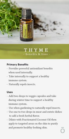 Thyme has nearly unlimited benefits. Discover more about how to use and benefit from this powerful essential oil.