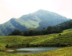 Holiday Packages For Kerala Tour Deals on Fli-ghts.com.Find Kerala Travel Tour Packages Deal For Holiday ,Kerala Tour Package For Vacation ,Honeymoon and more.