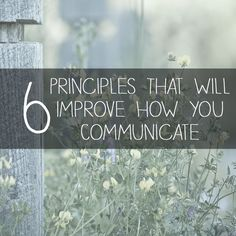 The basis for building relationships in your marriage and family is healthy communication - Learn how to apply these skills in this powerful presentation by Homeschool Graduation Ideas, Homeschool High School, Homeschooling, Speech And Debate, Field Trips, Marriage And Family, Scouting, Geology, Social Studies