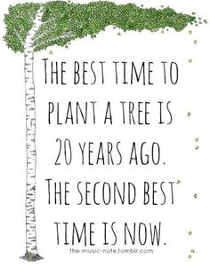 """Sustainability Quotes: """"The best time to plant a tree is twenty years ago. The s… – Best Garden Plants And Planting Environment Quotes, Tree Quotes, Plants Quotes, Quotes About Plants, Garden Quotes, Garden Sayings, Nature Quotes, Quotes To Live By, Sustainability"""