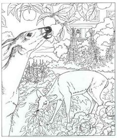 Dover Publications Coloring Pages Printable