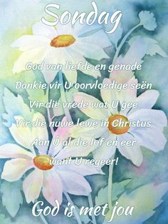 Goeie More, Afrikaans Quotes, Sunday Quotes, Morning Messages, Good Morning, Cards, God, Animals, Inspiration
