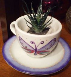 Tableware, Ideas, Plant Pots, Manualidades, Dinnerware, Tablewares, Dishes, Thoughts, Place Settings