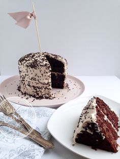 Healthy chocolate cake and whipped coconut icing (dairy-free, soy-free, low sugar, wholegrain, wheat-free)