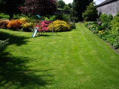 Annual Lawn Care Schedule: Grass Maintenance Through the Year