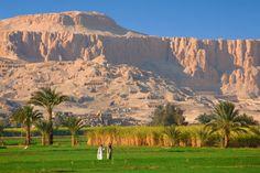 Luxor Crops, Egypt