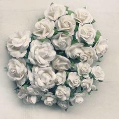 basics-roses-white