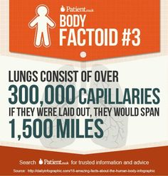 Who's given up cigarettes on No Smoking Day 2013 (13 March)? Discover more about your amazing lungs at www.Patient.co.uk