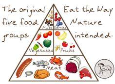 Paleo food pyramid-I could eat this way :)
