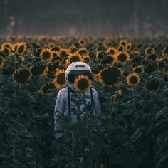Risultati immagini per sunflower astronaut Amazing Photography, Art Photography, Maternity Photography, Wow Art, Photo Displays, Aesthetic Wallpapers, Art Inspo, Backdrops, Artsy