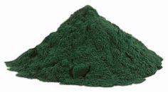 DIY Spirulina Superfood Micro-Farm Can Prevent Starvation and Help you Survive Tough Times -- Grow it Yourself - The JB Bardot Archives