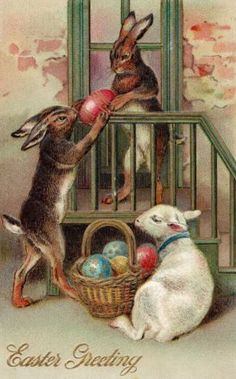 Easter Bunny Goat