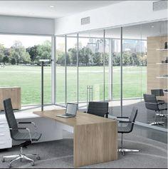 Office ready / Caracas-Miami. Executive office. #office #furniture #t45 #italy #miami #caracas #president #showroom #interiordesign #plans #render #wynwood #designdistrict www.bieffedesign.com