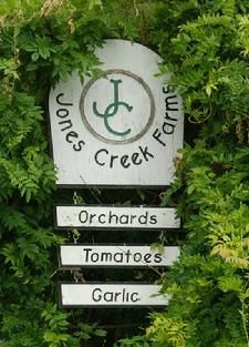 Jones Creek Farms - Sedro Woolley- organically grown farm. Harvest festival October 19-21 apple picking, tour the farm, U-pick Pumpkin patch, hay rides, fresh hot cider, music, entertainment, food & refereshments (and garlic!)