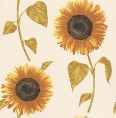 Sunflower (FD30267) - Albany Wallpapers - A large scale, realistic and pretty sunflower design. Shown here in yellow on cream; available also in red on a grey background. Please request a sample for true colour and effect.