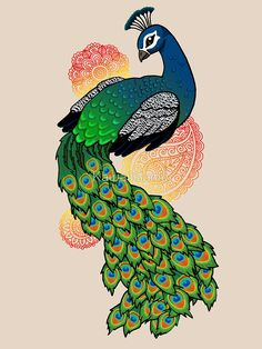 Images Of Peacock For Drawing < Images & galleries Peacock Wall Art, Peacock Painting, Peacock Quilt, Peacock Colors, Animal Drawings, Cool Drawings, Pencil Drawings, Peacock Drawing Images, Peacock Images
