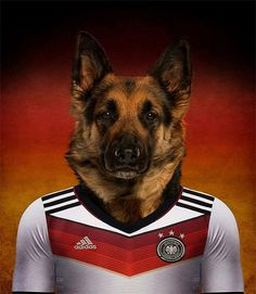 870 Dogs Of Word Cup Brazil 2014