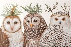 The Winter Owl Paper Placemats are a must-have for easy winter and holiday entertaining. The nature of the paper allows for easy cleaning and the charming artwork by Vicki Sawyer stuns on any table. Owl Art, Bird Art, Illustrations, Illustration Art, Paper Owls, Wise Owl, Oui Oui, Bird Feathers, Decoupage