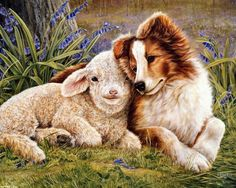 Sheepdog and Lamb Religious Diamond Painting Kit Full Drill. by OurCraftAddictions Cross Paintings, Animal Paintings, Collie, Farm Animals, Cute Animals, Sheltie, Shepherd Dog, All Dogs, Dog Art