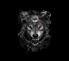 angry wolves -  zedge