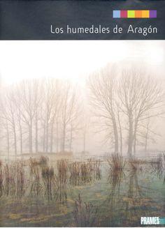 Oak Tree, Zaragoza, Book, Activities