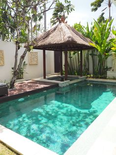 Having a pool sounds awesome especially if you are working with the best backyard pool landscaping ideas there is. How you design a proper backyard with a pool matters. Amazing Swimming Pools, Small Swimming Pools, Small Backyard Pools, Backyard Pool Landscaping, Small Pools, Swimming Pools Backyard, Swimming Pool Designs, Cool Pools, Landscaping Ideas