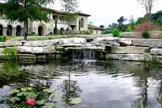 The creek cascades into the large water lily and goldfish pond surrounded by cypress trees
