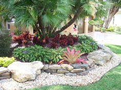 Admirable Front Yard Landscaping Ideas for Your Front of House : Gorgeous Tropical Landscape With Front Yard Landscaping Surrounded By Croton And Fern Also Bromeliad Under Palm Tree Then Added By Stone Landscaping