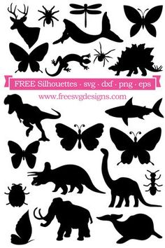 Decorative elements for use in your cutting projects including arrows, flowers, banners and vintage designs. Free for personal use Silhouette Cameo Free, Animal Silhouette, Silhouette Cameo Projects, Silhouette Curio, Cricut Svg Files Free, Free Svg Cut Files, Scan N Cut Projects, Image Svg, Svg Cuts