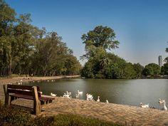 Amizing Lago de Regatas in the heart of Buenos Aires City