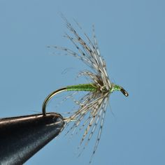 The Partridge and Green soft hackle fly