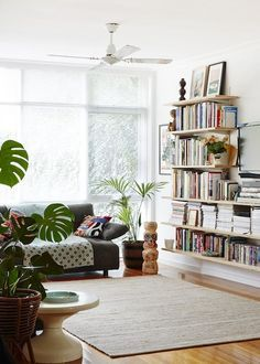Nice plants(in a basket!) And like shelves with a plant
