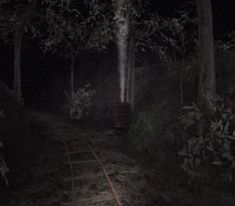 Aesthetic Grunge, Aesthetic Art, Indie Photography, Old Video, Dark Forest, Mists, Creepy, Weird, Scenery