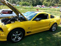 2012 Cobra Mustang (w/boss kit)  Posted by Troy Hollenbeck www.troyhollenbeck.com