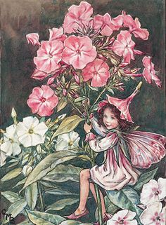 Ceramic Sensations Phlox Flower Fairy art is not only beautiful but each piece has versatile use. You can hang your art on the wall, use it in your kitchen, or any other decorative use you can think of.
