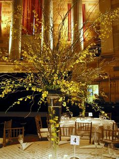 Tall centerpiece and centerpieces on pinterest