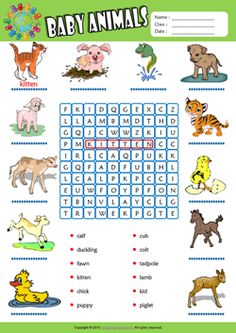 simple spanish vocabulary search a word puzzles printable worksheets packet for kids only. Black Bedroom Furniture Sets. Home Design Ideas