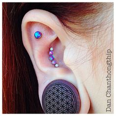 Anatometal Purple, Lavender and White Opal cluster for this healed conch with Purple Opal Cabochon accompaniment also healed!