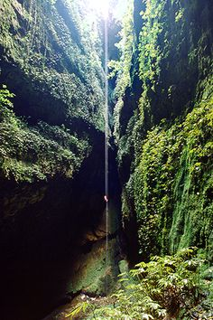 "Cave Diving: ""The Lost World"" - Waitomo Caves, North Island, New Zealand."
